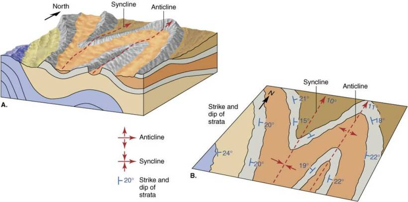 Anticline diagram